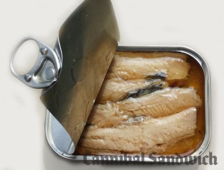 sardines-opened